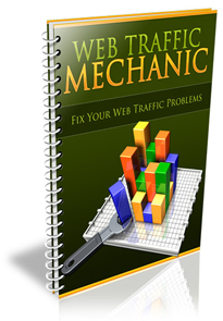 Web Traffic Mechanic